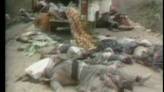 Iran-Iraq War 1980 to 1988 - Part 2 of 3