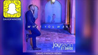 Jay Sean, Davido - What You Want (David Parker Remix)   Dance