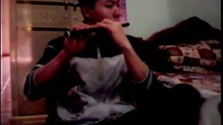 tâm sự với người lạ (Nguyên chấn Hiệp) - Flauta (sáo - nhựa )