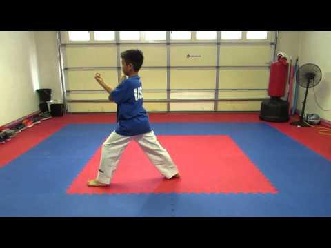 Xxx Mp4 Taekwondo Poomsae 1 8 And Black Belt 1st 9th Dan 3gp Sex