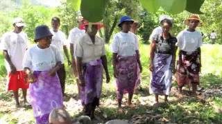 SEPALI Madagascar:  Working together