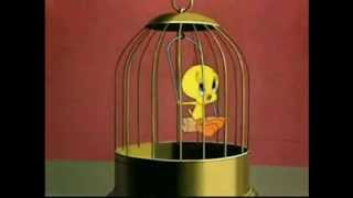 Happy Birthday, Tweety Bird Style!