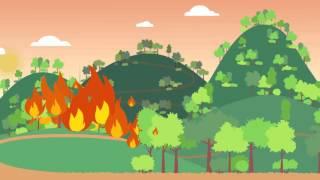 森林防火宣導動畫