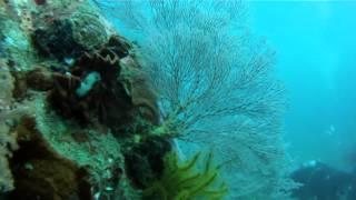 5000 years old underwater Hindu Temple at Bali Indonesia
