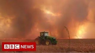 Spike in wildfires in Brazil's Amazon rainforest - BBC News