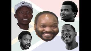 South African Politicians Before and After The Struggle