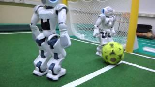 Nao-Team HTWK - Nao control via Wiimote, 1
