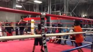 DT Boxing Part 2