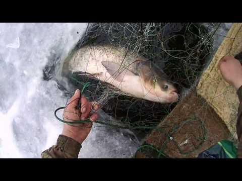 новое видео рыбалка сетями