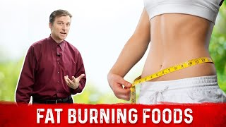 Fat Burning Foods / Download the Fat Burning Food Chart Below