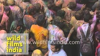 An explosion of colours - Holi celebration in Vrindavan
