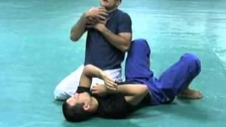 Brock Lesnar vs. Shane Carwin UFC 116 (Gracie Breakdown)