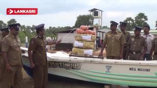 Three Person Arrested With Ganja,Currency and drug pills in Jaffna Karainagar area