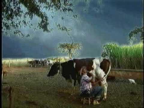 homem e pego pela sua esposa tentando comer a vaca muito eng