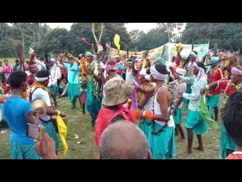 DHANAURA DURGA PUJA SANTHALI DANCE