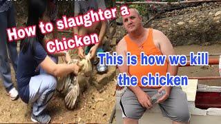 FilipinaAmerican sa bukid!! Killing chicken!! JaniceHaroldJourney