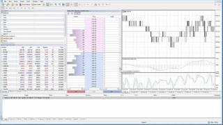 MetaTrader5   MT5   DOM (Depth of Market)