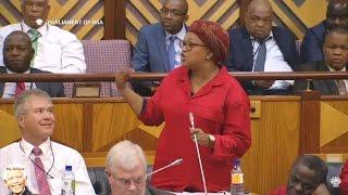 Public In Parliament Gallery Angers EFF MP Natasha Louw