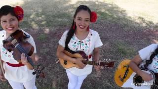 Feliz Día Del Músico!!! Con Cariño Las Mañanitas Huastecas Por El Trío Perlitas Queretanas