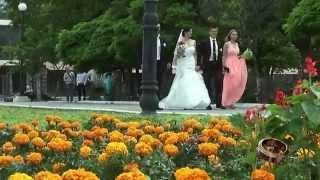 Свадебная прогулка ( часть2) Wedding walk ( part2)