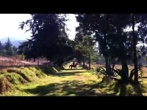 Joan Sebastián y Antonio Aguilar caballo bayo rancho san Luis