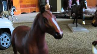 Girl in a Country Song- Breyer Horse Music Video