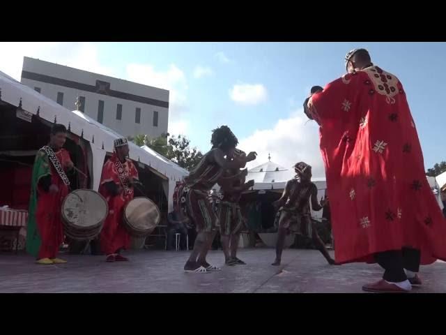 Le Maroc invité d'honneur du MIVA 2016