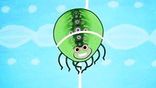 Tinga Tinga Tales Official | Why Spider Has a Tiny Waist | Tinga Tinga Tales Full Episodes