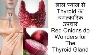 लाल प्याज से Thyroid का चमत्कारिक उपचार..!! Red Onions do Wonders for The Thyroid Gland