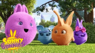 Cartoons For Children   SUNNY BUNNIES - WE ARE OFF TO THE BEACH   New Episode   Season 3   Cartoon