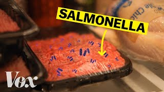 How salmonella-tainted food gets in your fridge