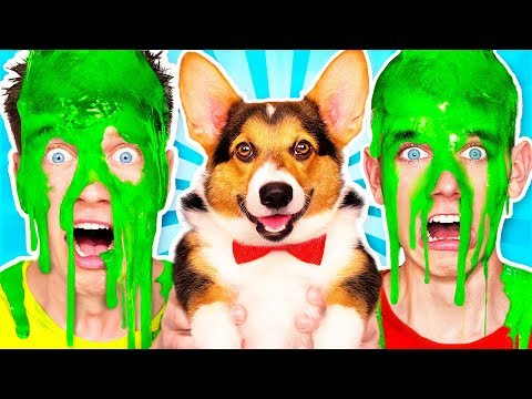 Xxx Mp4 Dogs Pick Our Mystery Slime Challenge 2 Amp How To Make The Best Funny DIY Orbeez Switch Up Game 3gp Sex