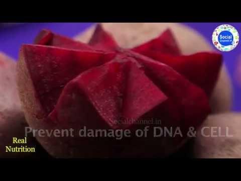 Xxx Mp4 Benefits Of Beetroot Cukandar Ke Fayde Beetroot Juice For Hair Color Salad Healthy Heart Food 3gp Sex
