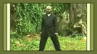 Congo---Papa-Wemba---Alpa-Tshino---Bokabuani.avi