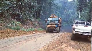 Lori Balak Terkuat di Hutan Malaysia | Stewong | 2017