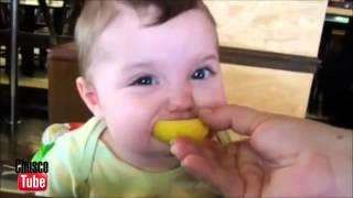 Bebés comiendo limón por primera vez Babies
