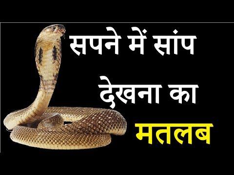 Xxx Mp4 Sapne Mai Saap Snake Dekhne Ka Matlab विभिन प्रकार के Saap Dekhne Ka Fal। Sapno Ka Arth 3gp Sex