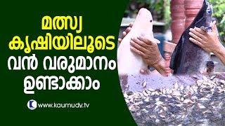 Huge profit from fish farming | Haritham Sundaram EP 123 | Kaumudy TV