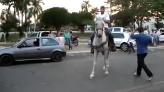 Coice de cavalo
