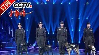 《中华情》 20180211 警花与警犬 | CCTV中文国际