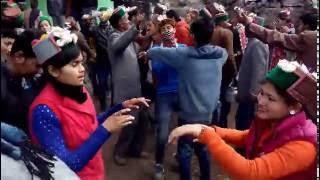 Kinnaur....  Live dance  (Nichar to Bari marriage of my sweet batiji)