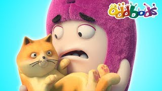 Oddbods | CAT CATASTROPHE | NEW FULL EPISODES | Cartoon | Funny Cartoons For Children | Oddbods Show