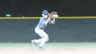 Baseball, Baseball, and More Baseball