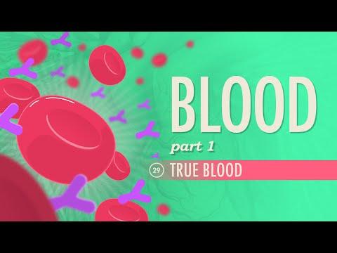 Xxx Mp4 Blood Part 1 True Blood Crash Course A P 29 3gp Sex