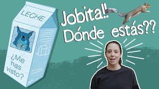 ¿QUÉ PASÓ CON JOBITA?- SOFÍA NIÑO DE RIVERA