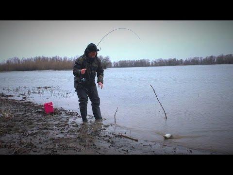 открытие рыбалки на доне