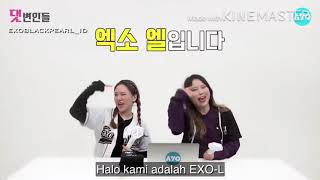 EXO-L comment on hater of EXO (indo sub)