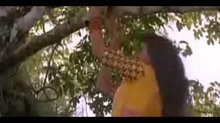 Malayil yaro manathodu Pesa - Sathriyan Hd song
