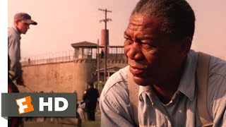 The Shawshank Redemption (1994) - I Just Miss My Friend Scene (8/10) | Movieclips