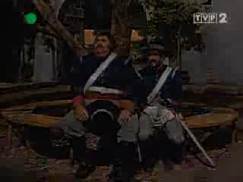 zorro Latino Amnistía para el Zorro